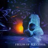 Pochette de l'album Fields of Næcluda de Fields of Naecluda