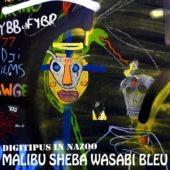 Pochette de l'album Malibu Sheba Wasabi Bleu de Digitipus in Nazoo